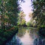Le Canal du Midi oil 25 x30cms