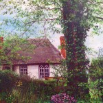 Thatch Through the Trees A3 print on pastel paper