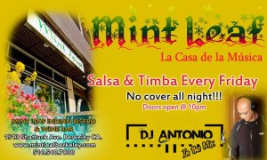 Mint Leaf Timba