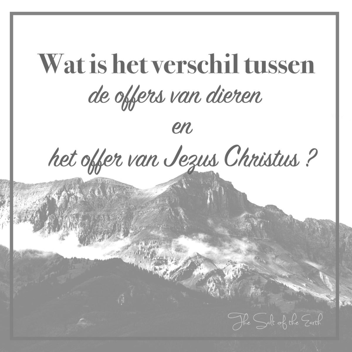 Wat is het verschil tussen de offers van dieren en het offer van Jezus Christus?