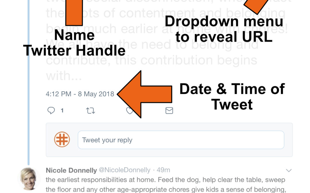 How to Cite a Tweet A Guide for MLA, Chicago, and APA - Salty Waffle