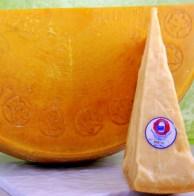 Parmigiano Reggiano di Razza Bruna da 500 g (FILEminimizer)