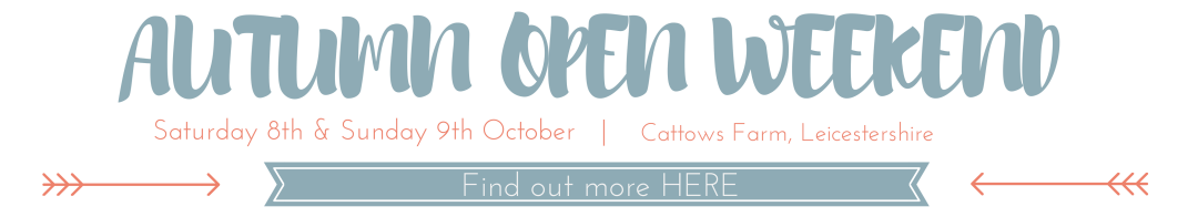 Sami Tipi Autumn Open Weekend at Cattows Farm 8th & 9th October 2016