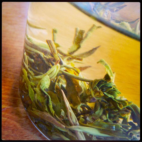 tea-closeup