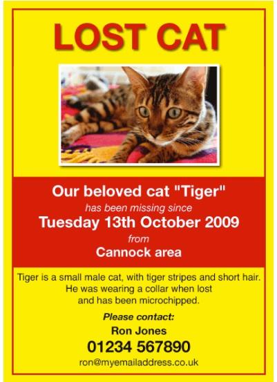 Missing Pet Poster Templates 13+ Free Printable Word  PDF