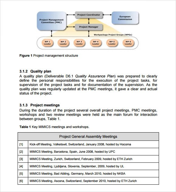 sample management report template - it report template