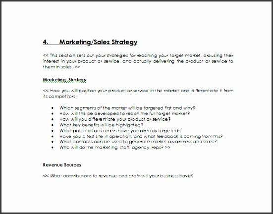 10 Business Sales Plan Template - SampleTemplatess - SampleTemplatess - sample sales plan