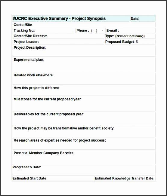 Project Summary Template Constuction Project Summary Report - project summary report example