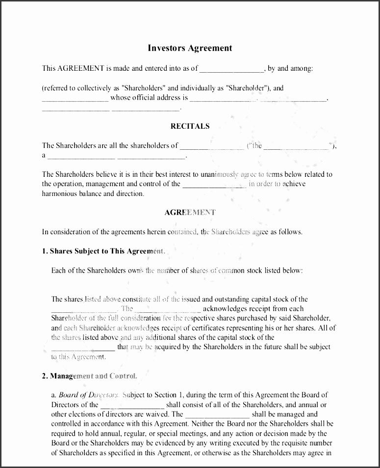 sample investors agreement