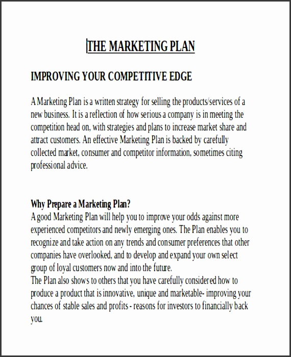 5 Printable Marketing Report Template - SampleTemplatess - sample marketing report templete