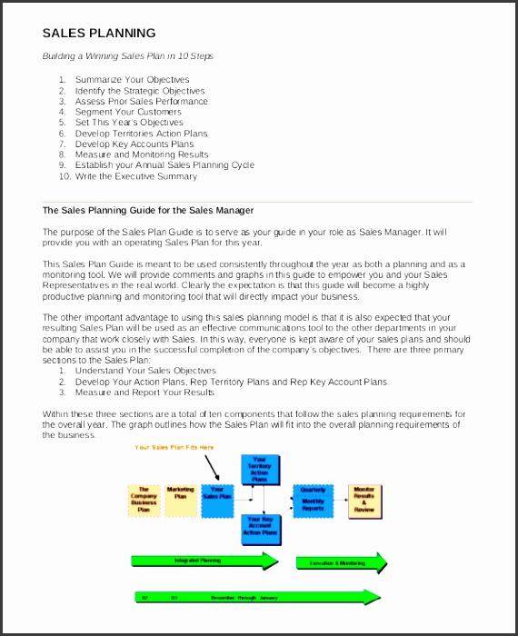8 Sales Plan Sample - SampleTemplatess - SampleTemplatess