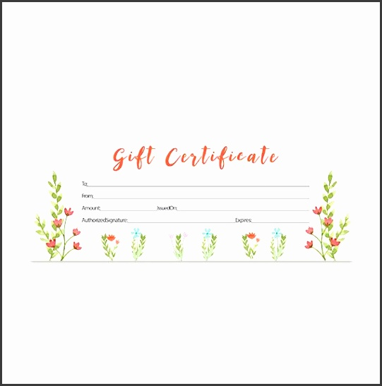 5 Printable Blank Gift Certificates - SampleTemplatess - Printable Blank Gift Certificates