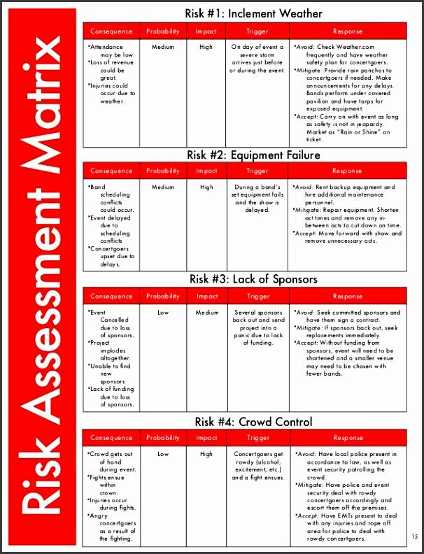 9 Risk assessment Matrix Template Excel - SampleTemplatess