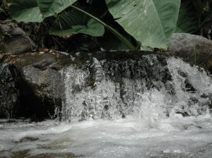 Don't panic.  Be like the tiny waterfall joining the big river.  Deep, man, deep.