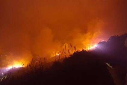 Camp Pendleton wildfire. Photo: Frazer Moran