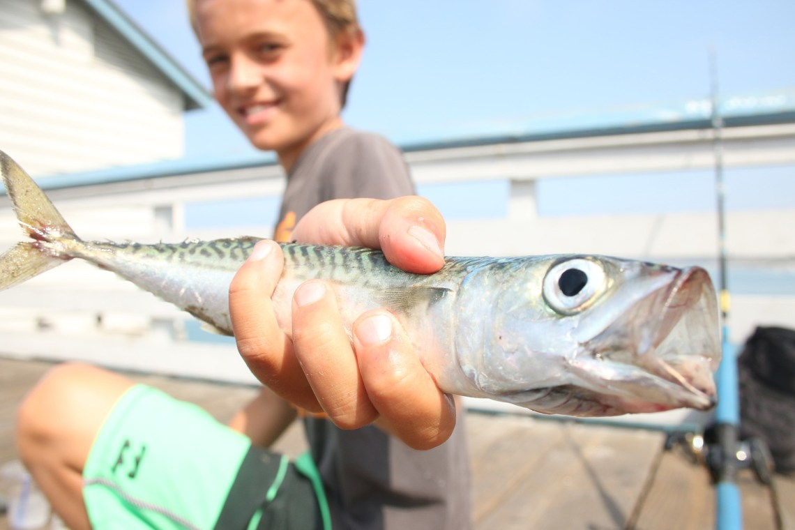A fishing derby contestant enjoys the day during Ocean Fest. Photo: Eric Heinz