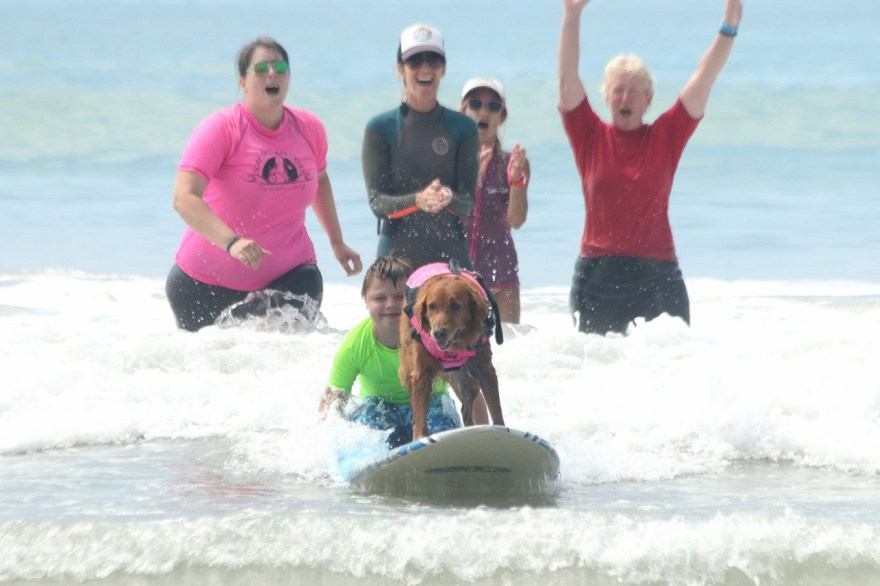 Members of Special Fishies and Sandy Feet Initiative cheer on a child while he surfs with a service dog on Sept. 16 at Linda Lane Beach.