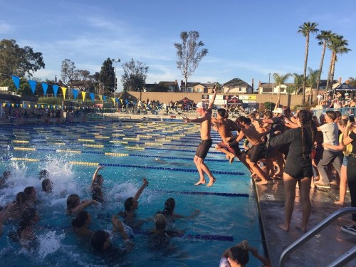 San Clemente's swim teams leap into the pool after sweeping the Sea View League team titles. Photo: Courtesy