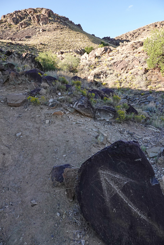 The trail to the Mystery Stone on Hidden Mountain, New Mexico, is not easy to follow but occasional hints do appear. Photo: Fred Swegles