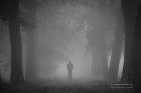 Solitude, walking in a foggy lane.