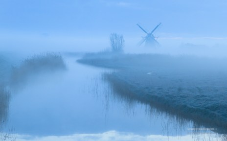 foggy dawn at a windmill in the Dutch countryside.