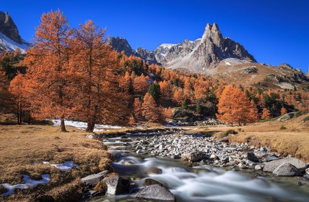 The river Claree and Larch trees in Vallee de la Claree during a clear, autumn day.