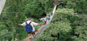 tour rainforest sandoval lake lodge