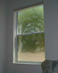 Delicate Saplings Glass Window Etched Glass Asian Design