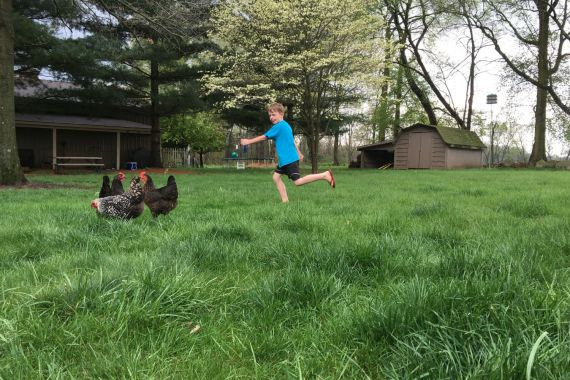 april 2016: what I'm learning and loving