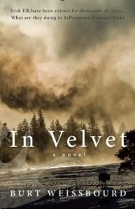In Velvet cover