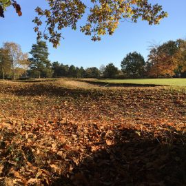 autumn-golf