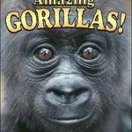 Amazing Gorillas