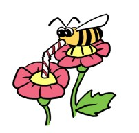 bee-sipping-flower