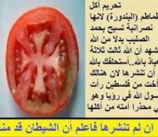 Tomat Haram dimakan