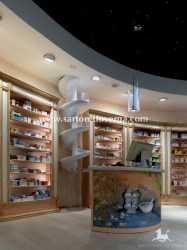 pharmacy-project_003