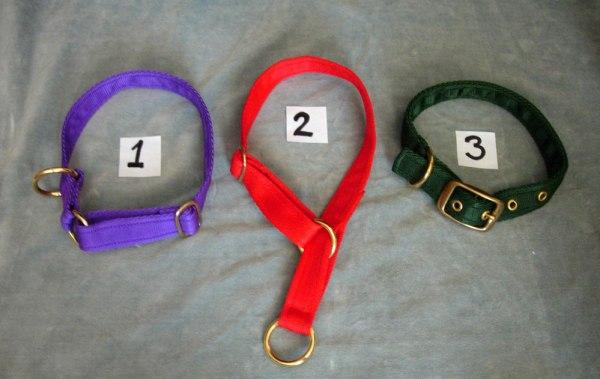 Sass collars