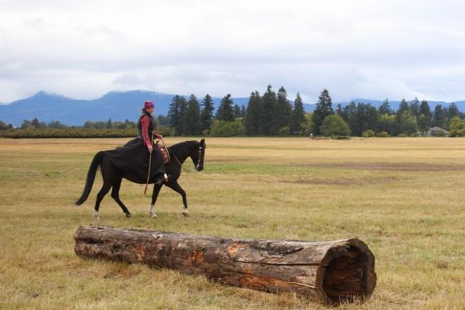Artic Horse Tongass Rain Skirt
