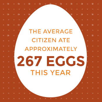 Egg Sizing Guide - Sauder\u0027s Eggs