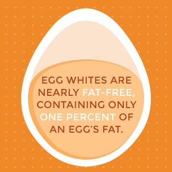 Eggs vs Egg Whites Which One Is Healthier? Sauder\u0027s Egg Nutrition
