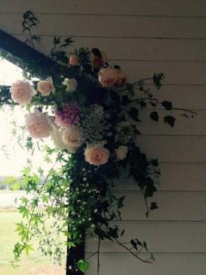 prunella-flowers-03