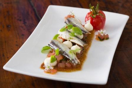 Gourmet Spanish sardines