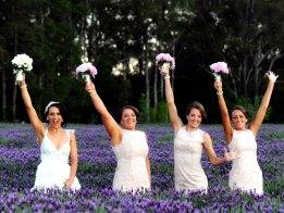 sault-weddings-gallery-009