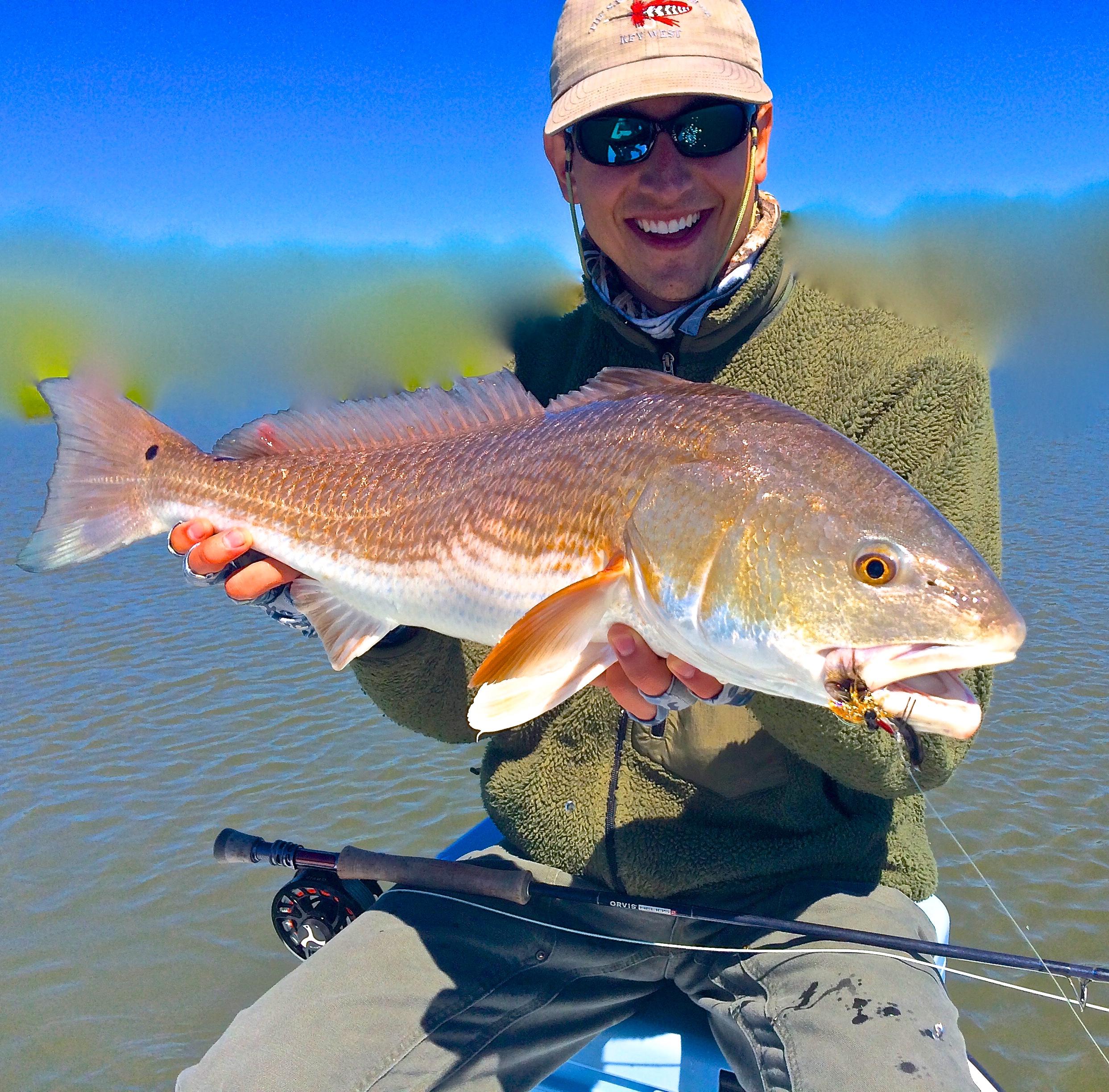 Hilton head fly fishing for Flying fish addison