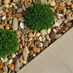 Tips for Landscaping Your Dream Home