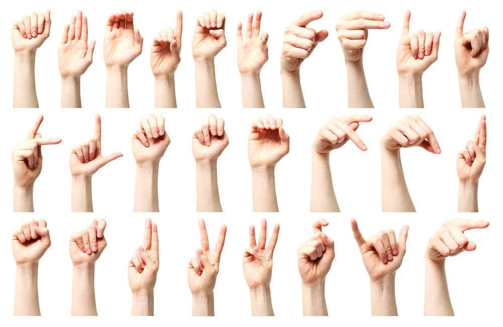 cv mettre langue des signes
