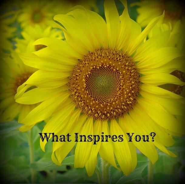 What Inspires You? - Savory Lotus