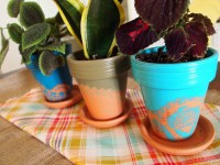 Painted Terracotta Pots | www.imgkid.com - The Image Kid ...
