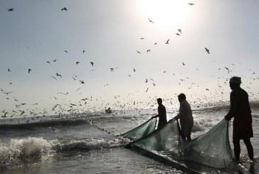 اسماك اربيل ممنوع صيدها من 15 نيسان وحتى اواخر ايار