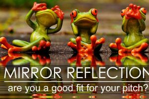 Mirror Reflection: Are you a Good Fit for your Pitch?