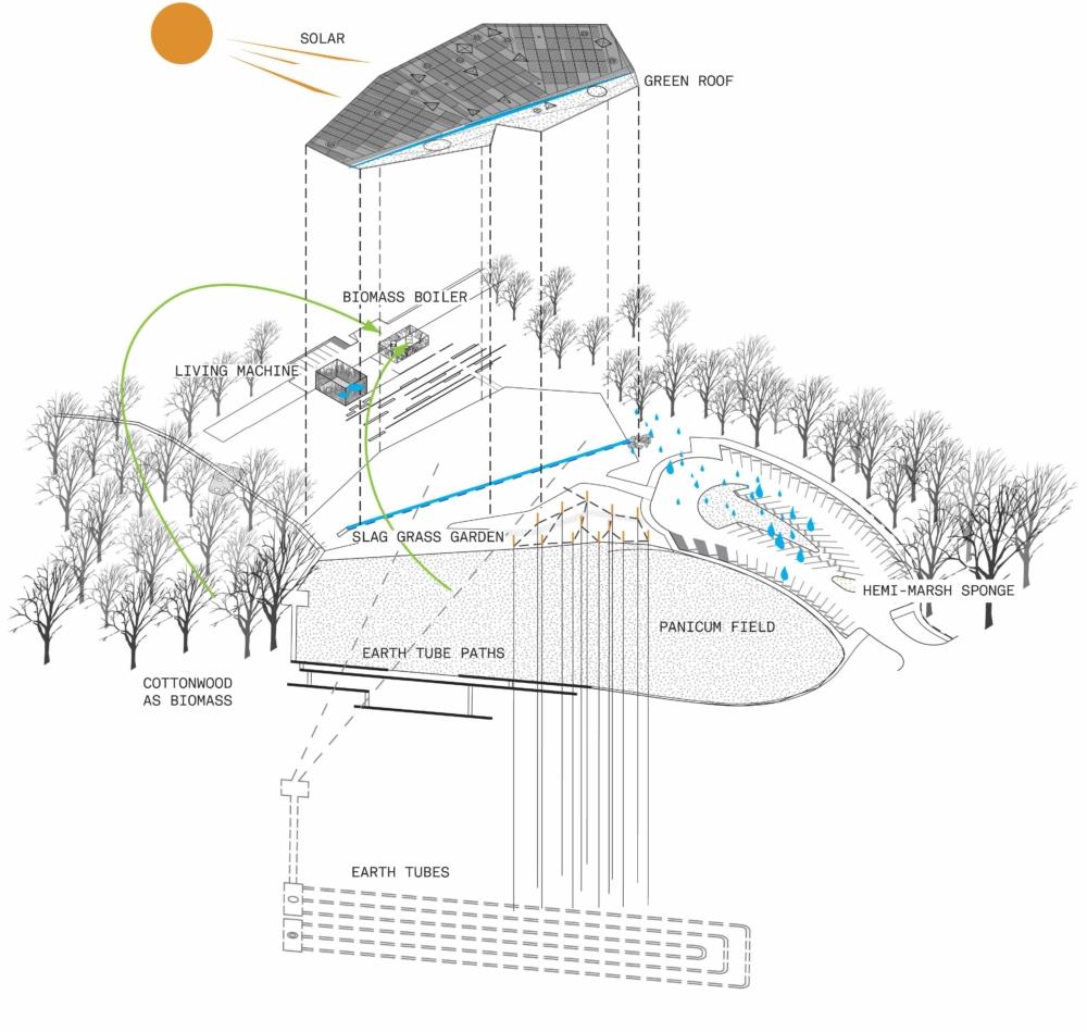 marsh land diagram